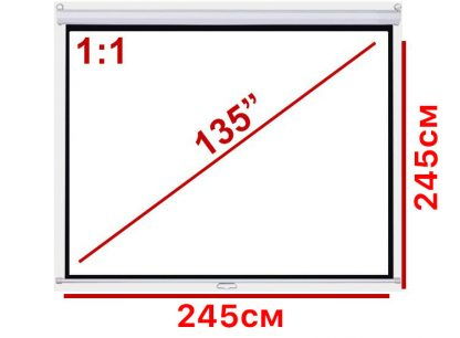 """Экран для проектора 135"""" 1:1 245*245см настенно-потолочный рулонный купить в Москве по недорогой цене"""
