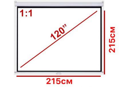 """Экран для проектора 120"""" 1:1 215*215см настенно-потолочный рулонный купить в Москве по недорогой цене"""